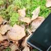Как найти потерянный телефон. Как определить местонахождение мобильного через спутник, интернет или по IMEI