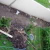 Шаг за шагом: дизайн маленького сада около дома своими руками